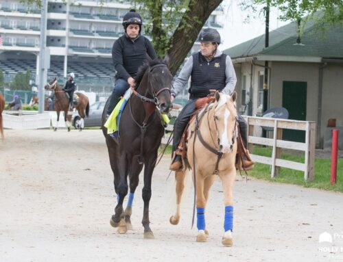 Medina Spirit Cleared to Run in Saturday's G1 Preakness Stakes