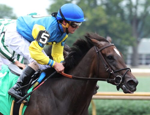 Churchill Downs' Upcoming Stakes: Caribbean Caper To Try Dogwood Stakes Next