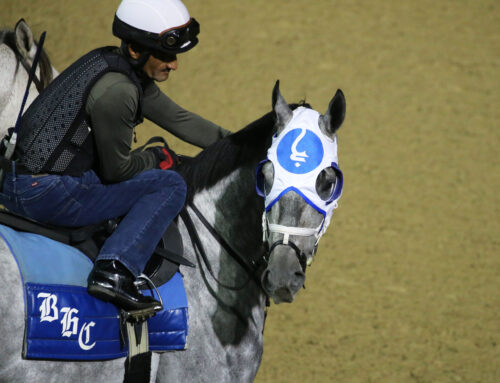 Churchill Downs' Saturday Barn Notes: Essential Quality Gets Morning Work