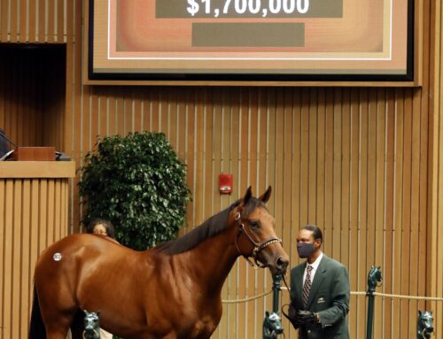 That's a WRAP: Keeneland Concludes Annual September Yearling Sales